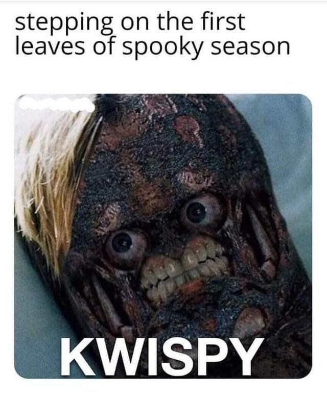 Fictional character - stepping on the first leaves of spooky season KWISPY