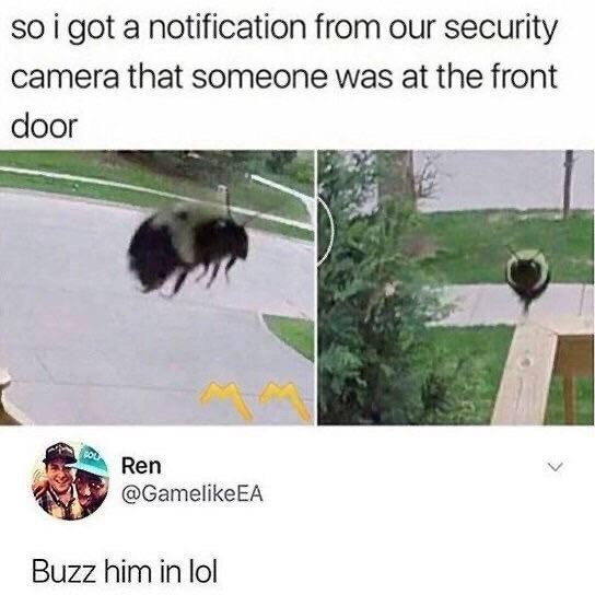 Organism - so i got a notification from our security camera that someone was at the front door Ren @GamelikeEA Buzz him in lol