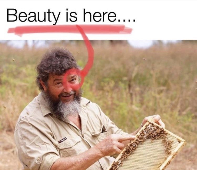 Adaptation - Beauty is here....