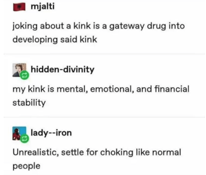Text - mjalti joking about a kink is a gateway drug into developing said kink hidden-divinity my kink is mental, emotional, and financial stability lady--iron Unrealistic, settle for choking like normal people