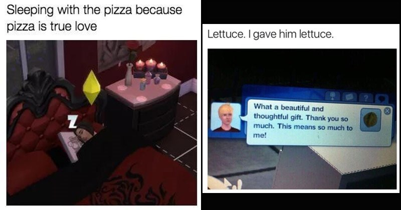 Funny memes about 'The Sims'