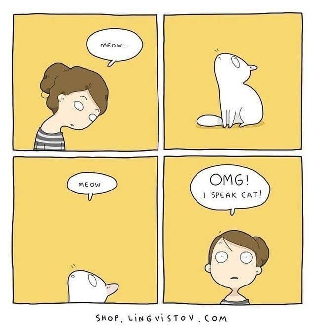 cat comics - 9365569024