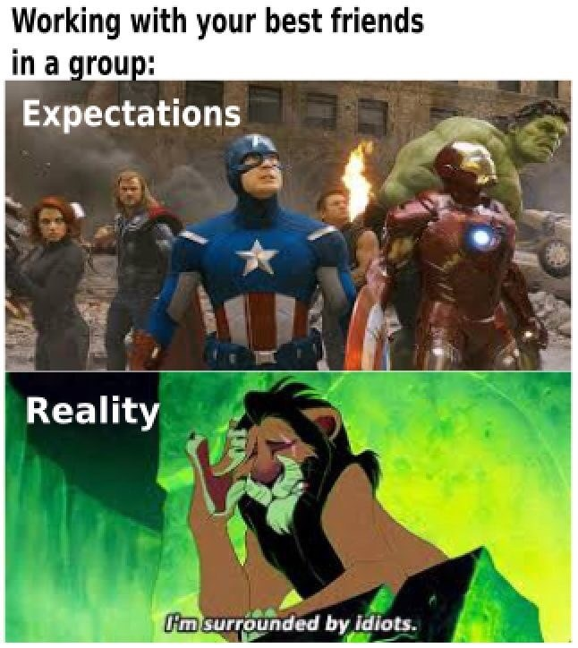 Fictional character - Working with your best friends in a group: Expectations Reality Fim surrounded by idiots.