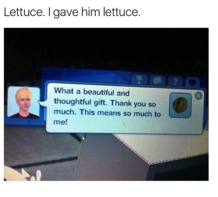 Text - Lettuce. I gave him lettuce. What a beautiful and thoughtful gift. Thank you so much. This means so much to me!