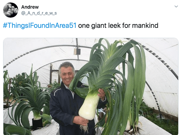 Plant - Andrew @_A_n_d_r_e_w_s #ThingsIFoundlnArea51 one giant leek for mankind
