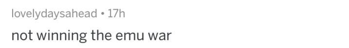 Text - lovelydaysahead 17h not winning the emu war