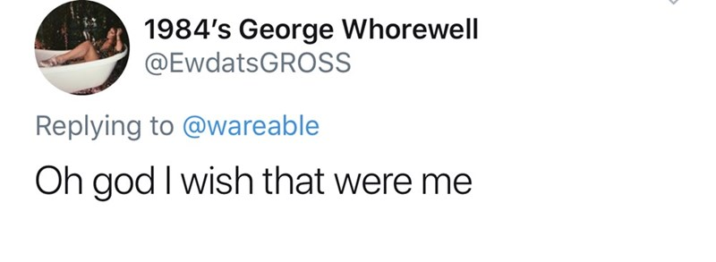 Text - 1984's George Whorewell @EwdatsGROSS Replying to @wareable Oh god I wish that were me