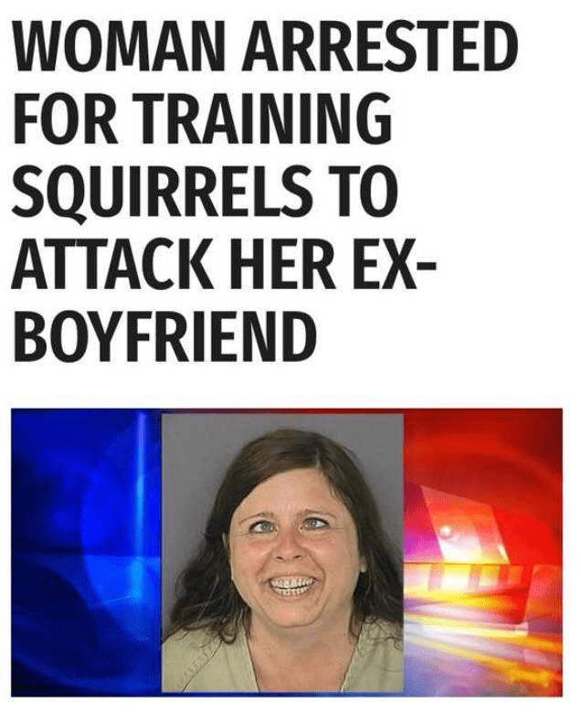 Text - WOMAN ARRESTED FOR TRAINING SQUIRRELS TO ATTACK HER EX ΒΟYFRIEND