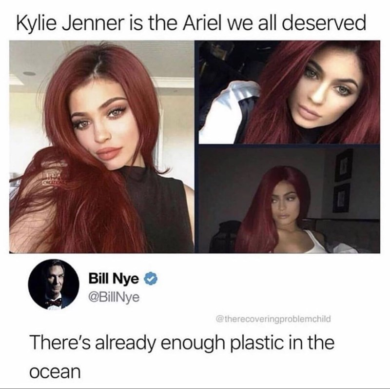 Hair - Kylie Jenner is the Ariel we all deserved Bill Nye @BillINye @therecoveringproblemchild There's already enough plastic in the Ocean