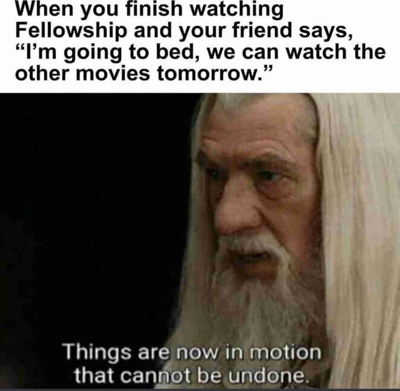 """Text - When you finish watching Fellowship and your friend says, """"I'm going to bed, we can watch the other movies tomorrow."""" Things are now in motion that cannot be undone."""