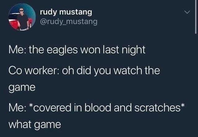 Funny tweet about eagles winning, football