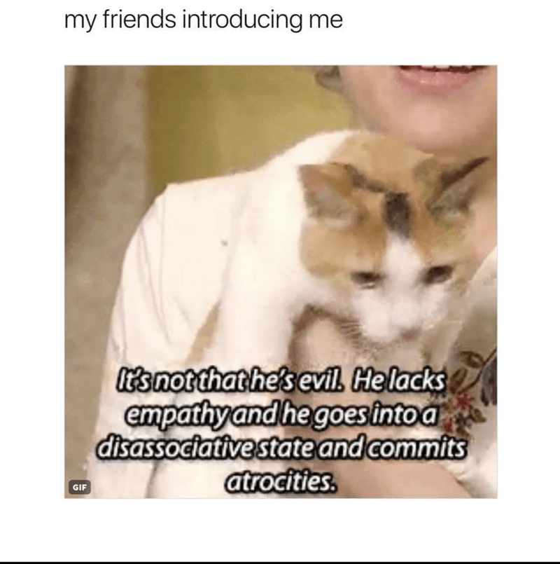 "Funny meme that reads, ""My friends introducing me"" above a photo of someone holding a cat saying, ""It's not that he's evil. He lacks empathy and goes into a dissociative state and commits atrocities"""