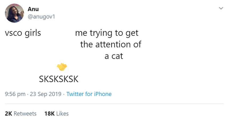 Text - Text - Anu @anugov1 me trying to get vsco girls the attention of а cat SKSKSKSK 9:56 pm 23 Sep 2019 Twitter for iPhone 18K Likes 2K Retweets