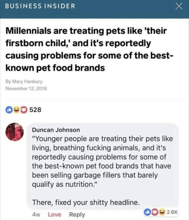 "Text - X BUSINESS INSIDER Millennials are treating pets like 'their firstborn child,' and it's reportedly causing problems for some of the best- known pet food brands By Mary Hanbury November 12, 2018 528 Duncan Johnson ""Younger people are treating their pets like living, breathing fucking animals, and reportedly causing problems for some of the best-known pet food brands that have been selling garbage fillers that barely qualify as nutrition."" There, fixed your shitty headline. 2.6K 4w Love Rep"