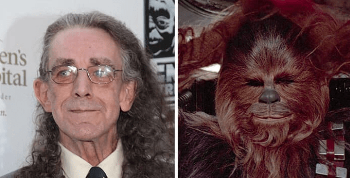 Chewbacca - en's ital der