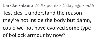 Text - DarkJackalZero 24.9k points 1 day ago edite Testicles, I understand the reason they're not inside the body but damn, could we not have evolved some type of bollock armour by now?