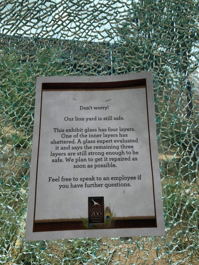 Text - Don't worry! Our lion yard is still safe. This exhibit glass has four layers. One of the inner layers has shattered. A glass expert evaluated it and says the remaining three are still strong enough to be layers safe. We plan to get it repaired as possible. Soon as employee if Feel free to speak to an you have further questions. MULNIAN ZOO witehing