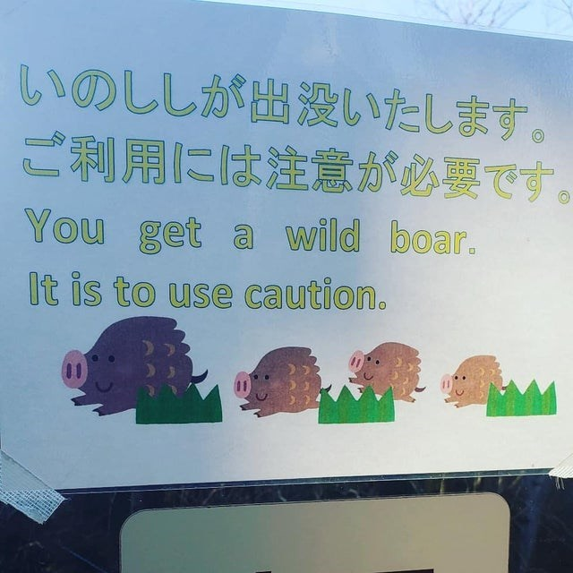 Text - いのししが出没いたします。 ご利用には注意が必要です。 You get a wild boar. It is to use caution.