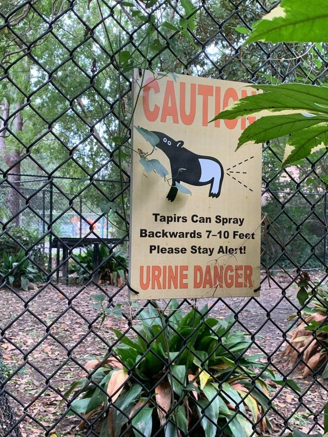 Zoo - CAUTIO Tapirs Can Spray Backwards 7-10 Feet Please Stay Alert! URINE DANGER