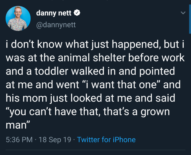 """Text - danny nett @dannynett i don't know what just happened, but i was at the animal shelter before work and a toddler walked in and pointed at me and went """"i want that one"""" and his mom just looked at me and said """"you can't have that, that's a grown man"""" 5:36 PM 18 Sep 19 Twitter for iPhone"""