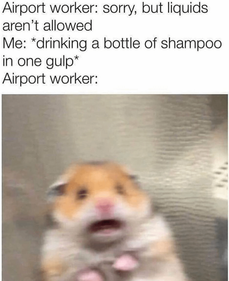 Text - Airport worker: sorry, but liquids aren't allowed Me: *drinking a bottle of shampoo in one gulp* Airport worker: