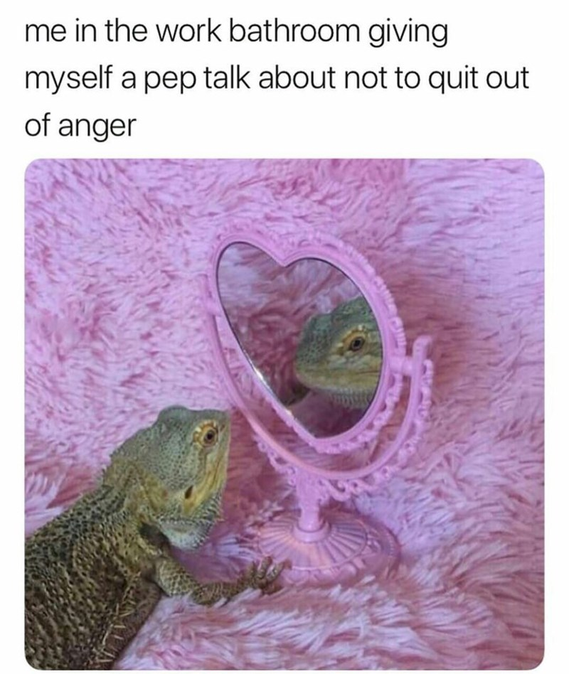 Frog - me in the work bathroom giving myself a pep talk about not to quit out of anger