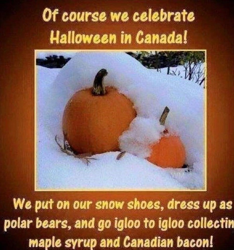 Fruit - Of course we celebrate Halloween in Canada! We put on our snow shoes, dress up as polar bears, and go igloo to igloo collectin maple syrup and Canadian bacon!