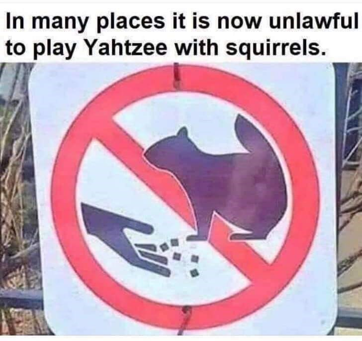 Sign - In many places it is now unlawful to play Yahtzee with squirrels.