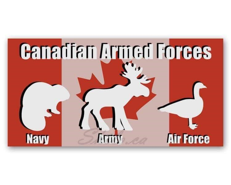 Rectangle - Canadian Armed Forces STETmy ea Air Force Navy