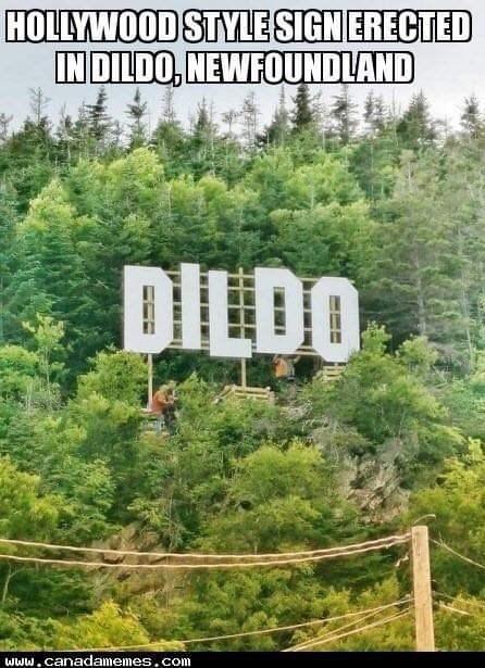 Nature - HOLLYWOOD STYLE SIGNERECTED INDILDO, NEWFOUNDLAND DILDO www.canadamemes.com