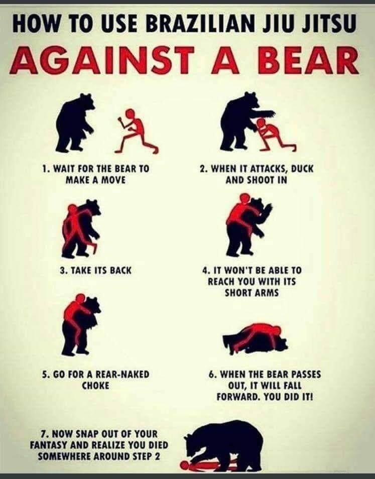 Text - HOW TO USE BRAZILIAN JIU JITSU AGAINST A BEAR 1. WAIT FOR THE BEAR TO MAKE A MOVE 2. WHEN IT ATTACKS, DUCK AND SHOOT IN 4.IT WON'T BE ABLE TO 3. TAKE ITS BACK REACH YOU WITH ITS SHORT ARMS 5. GO FOR A REAR-NAKED СНОKE 6. WHEN THE BEAR PASSES OUT, IT WILL FALL FORWARD. YOU DID IT! 7. NOW SNAP OUT OF YOUR FANTASY AND REALIZE YOU DIED SOMEWHERE AROUND STEP 2