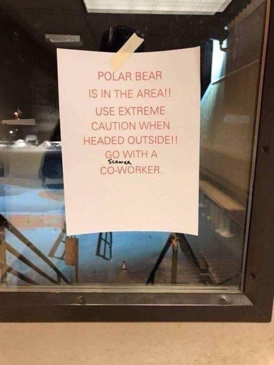 Text - POLAR BEAR IS IN THE AREA!! USE EXTREME CAUTION WHEN HEADED OUTSIDE!! GO WITH A SLONCA CO-WORKER