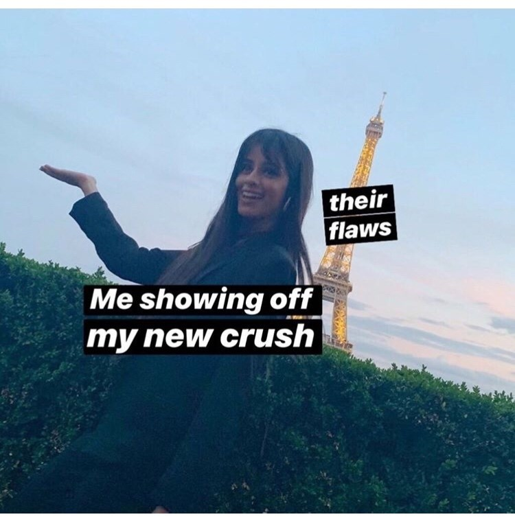 """Funny meme where the Eiffel Tower represents """"their flaws"""" and the girl in front posing in front of it represents """"Me showing off my new crush"""""""