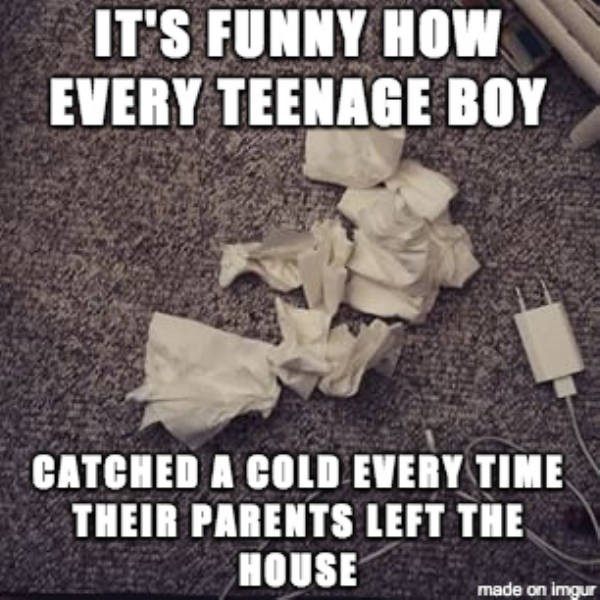 Font - IT'S FUNNY HOw EVERY TEENAGE BOY CATCHED A COLD EVERY TIME THEIR PARENTS LEFT THE HOUSE made on imqur