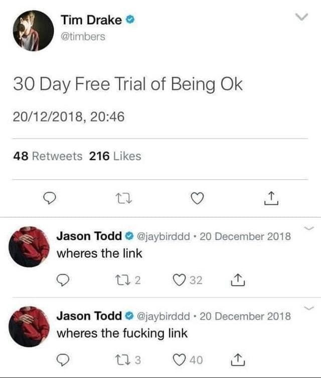 Text - Tim Drake @timbers 30 Day Free Trial of Being Ok 20/12/2018, 20:46 48 Retweets 216 Likes Jason Todd @jaybirddd 20 December 2018 wheres the link 12 32 Jason Todd@jaybirddd 20 December 2018 wheres the fucking link t 3 40