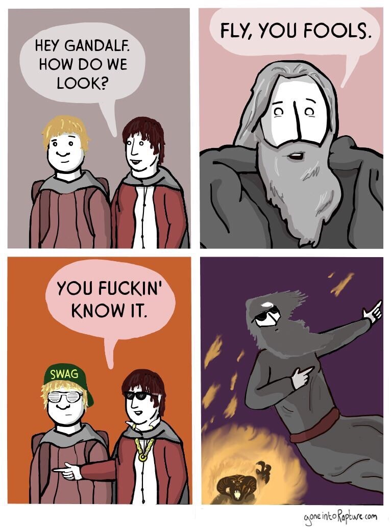 Cartoon - FLY, YOU FOOLS. HEY GANDALF HOW DO WE LOOK? YOU FUCKIN' KNOW IT. SE SWAG goneinteRapue com