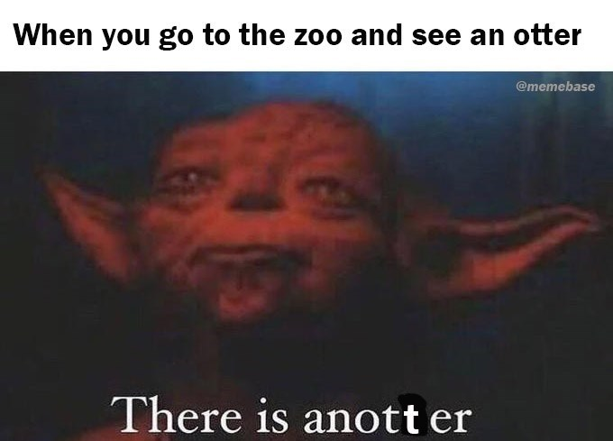 Text - When you go to the zoo and see an otter @memebase There is anott er