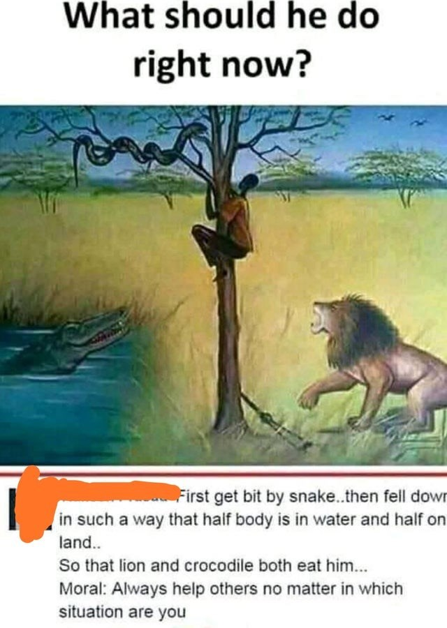 Organism - What should he do right now? First get bit by snake..then fell down in such a way that half body is in water and half on land. So that lion and crocodile both eat him... Moral: Always help others no matter in which situation are you