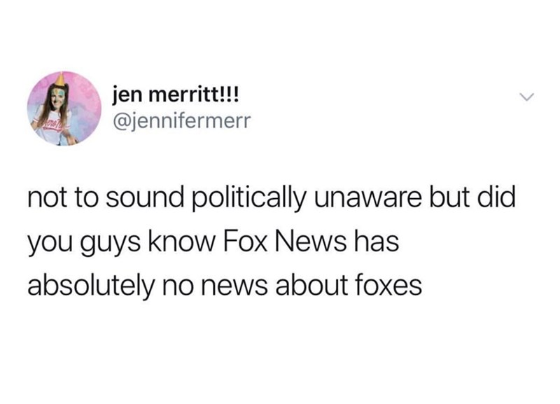 Text - jen merritt!!! @jennifermerr not to sound politically unaware but did you guys know Fox News has absolutely no news about foxes
