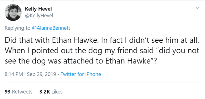 """Text - Kelly Hevel @KellyHevel Replying to @AlannaBennett Did that with Ethan Hawke. In fact I didn't see him at all. When I pointed out the dog my friend said """"did you not see the dog was attached to Ethan Hawke""""? 8:14 PM Sep 29, 2019 Twitter for iPhone 93 Retweets 3.2K Likes"""