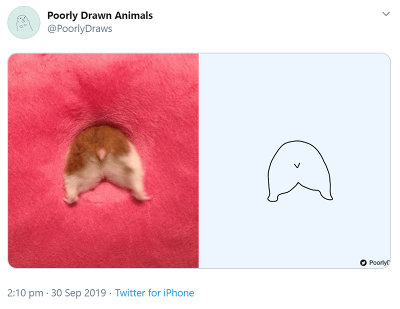 Organism - Poorly Drawn Animals @PoorlyDraws PoorlyD 2:10 pm 30 Sep 2019. Twitter for iPhone