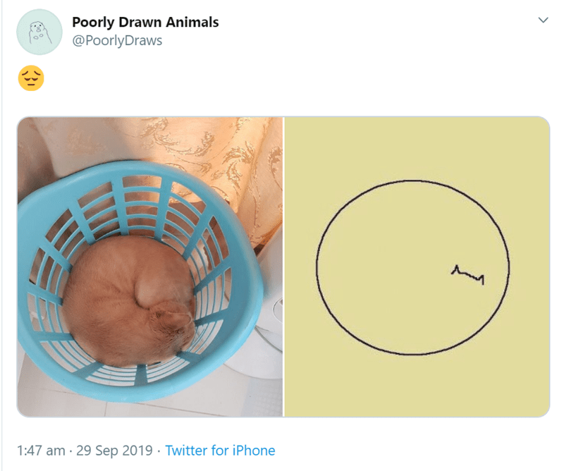Circle - Poorly Drawn Animals @PoorlyDraws 1:47 am 29 Sep 2019 Twitter for iPhone >