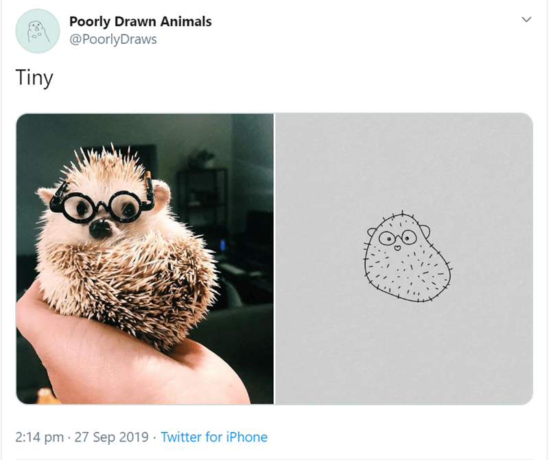 Hedgehog - Poorly Drawn Animals @Poorly Draws Tiny 2:14 pm 27 Sep 2019 Twitter for iPhone >