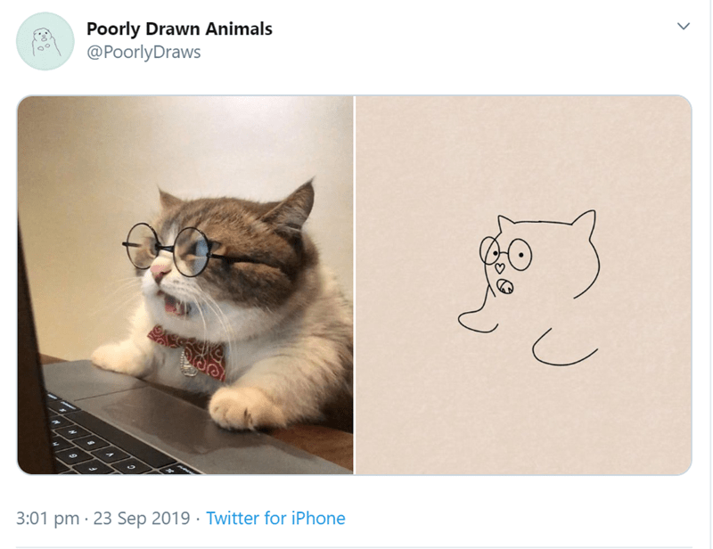 Cat - Poorly Drawn Animals @PoorlyDraws 3:01 pm 23 Sep 2019 . Twitter for iPhone
