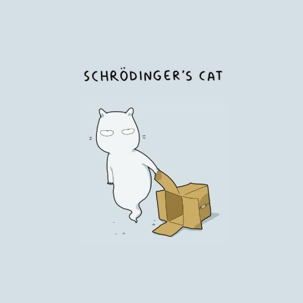 Cartoon - SCHRÖDINGER'S CAT