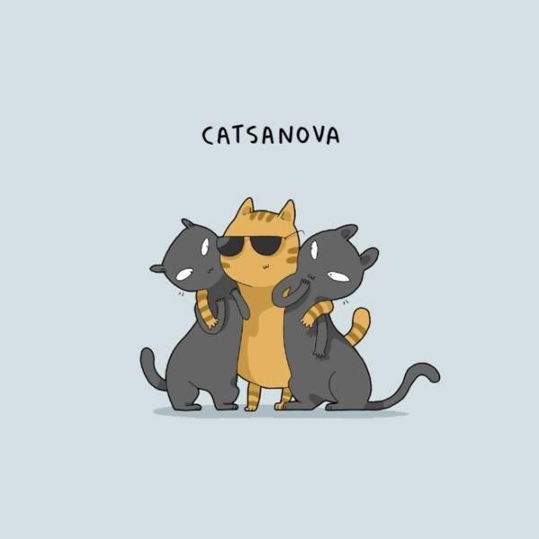 Cartoon - CATSANOVA