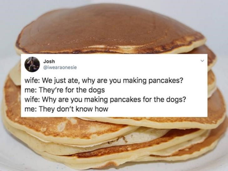 Dish - Josh @iwearaonesie wife: We just ate, why are you making pancakes? me: They're for the dogs wife: Why are you making pancakes for the dogs? me: They don't know how