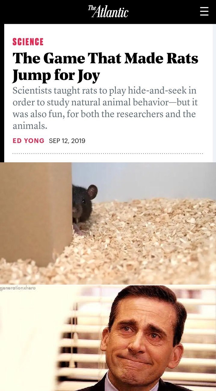 Text - The Atlantic SCIENCE The Game That Made Rats Jump for Joy Scientists taught rats to play hide-and-seek in order to study natural animal behavior-but it was also fun, for both the researchers and the animals ED YONG SEP 12, 2019 generationshero