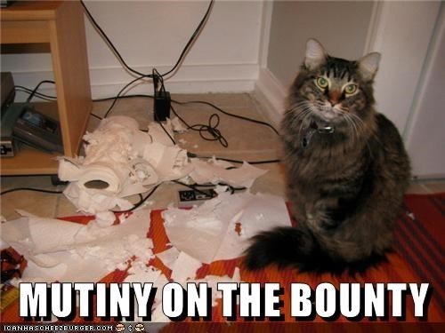 Cat - MUTINY ON THE BOUNTY ICANHASCHEE2E URGER CoM