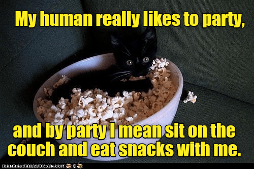 Photo caption - My human really likes to party, and by party Imeansit on the couch and eat snacks with me. ICANHASCHEE2EURGER cOM